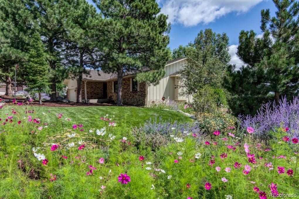 MLS# 5539974 - 38 - 5505 Saddle Rock Place, Colorado Springs, CO 80918