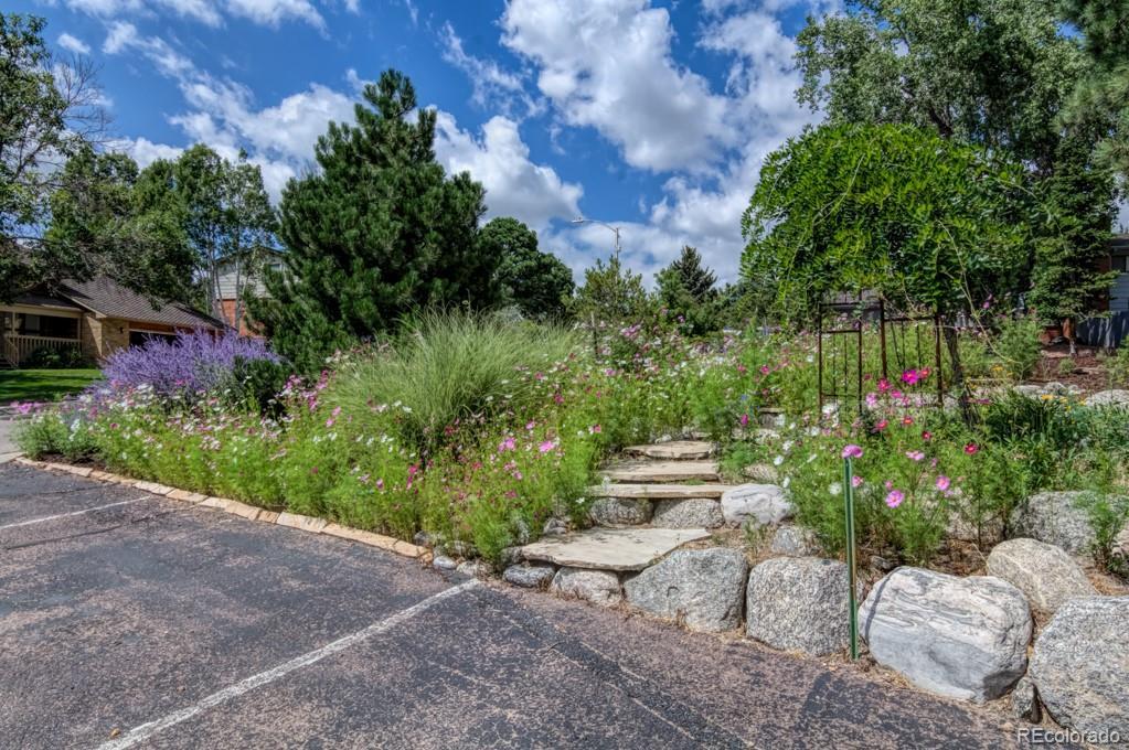 MLS# 5539974 - 40 - 5505 Saddle Rock Place, Colorado Springs, CO 80918