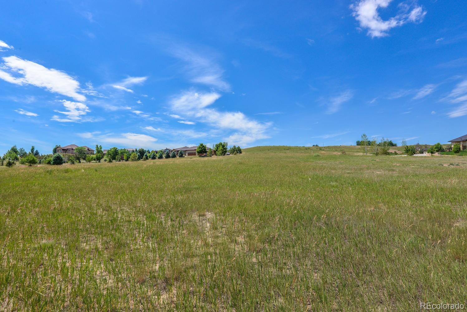 MLS# 5550021 - 30 - 1371 Barn Owl Court, Windsor, CO 80550