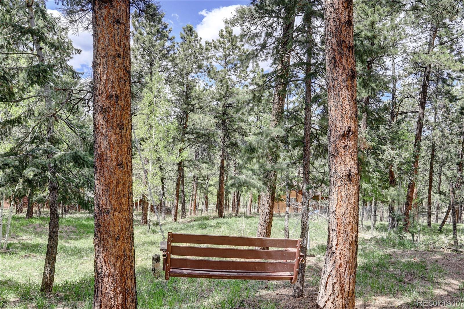 MLS# 5615851 - 24 - 163 N Circle Drive, Bailey, CO 80421