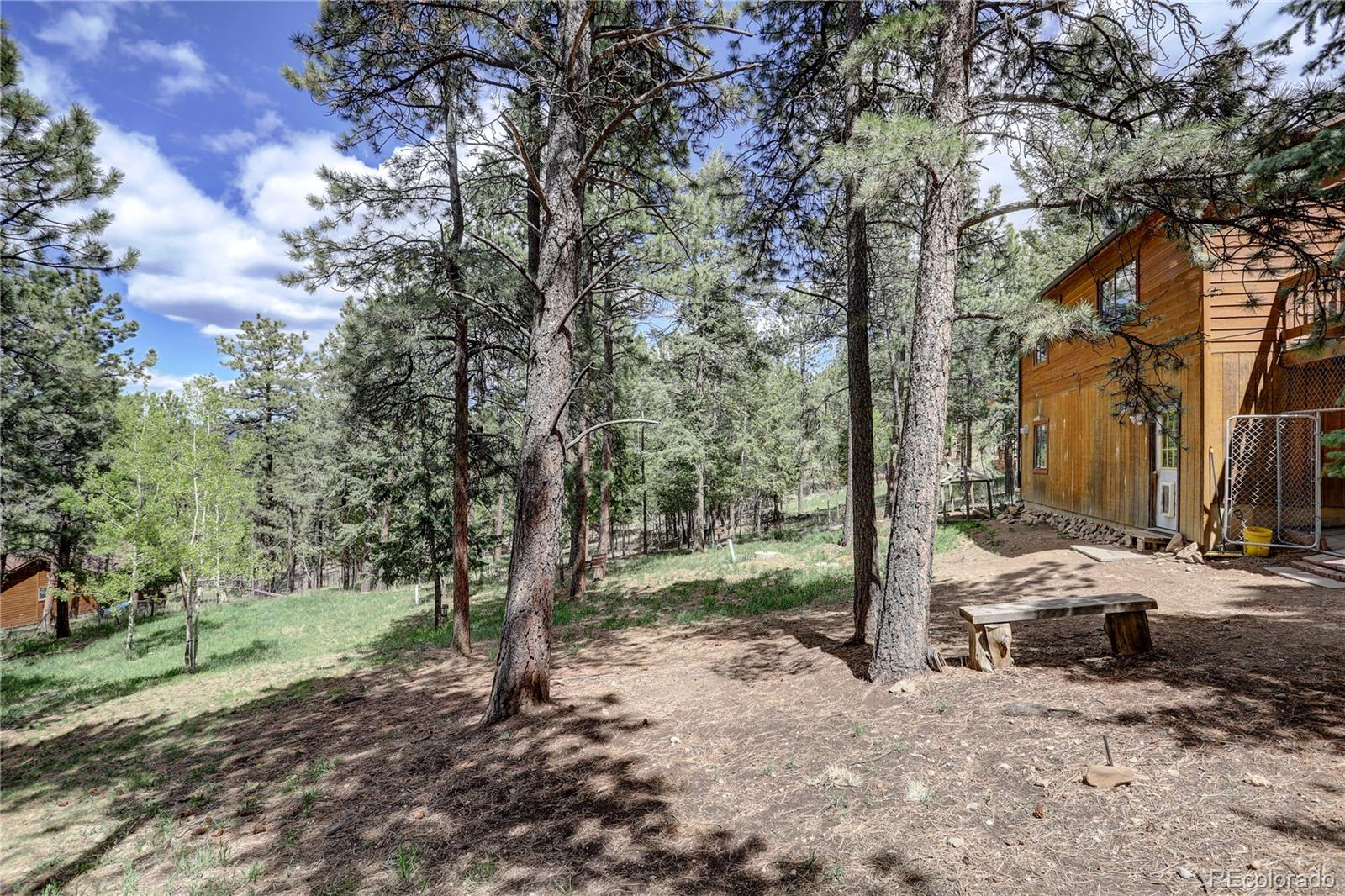 MLS# 5615851 - 25 - 163 N Circle Drive, Bailey, CO 80421