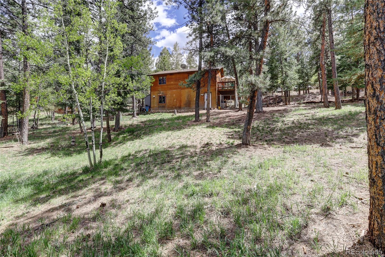 MLS# 5615851 - 27 - 163 N Circle Drive, Bailey, CO 80421