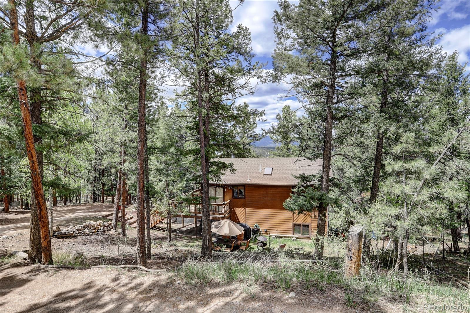 MLS# 5615851 - 29 - 163 N Circle Drive, Bailey, CO 80421