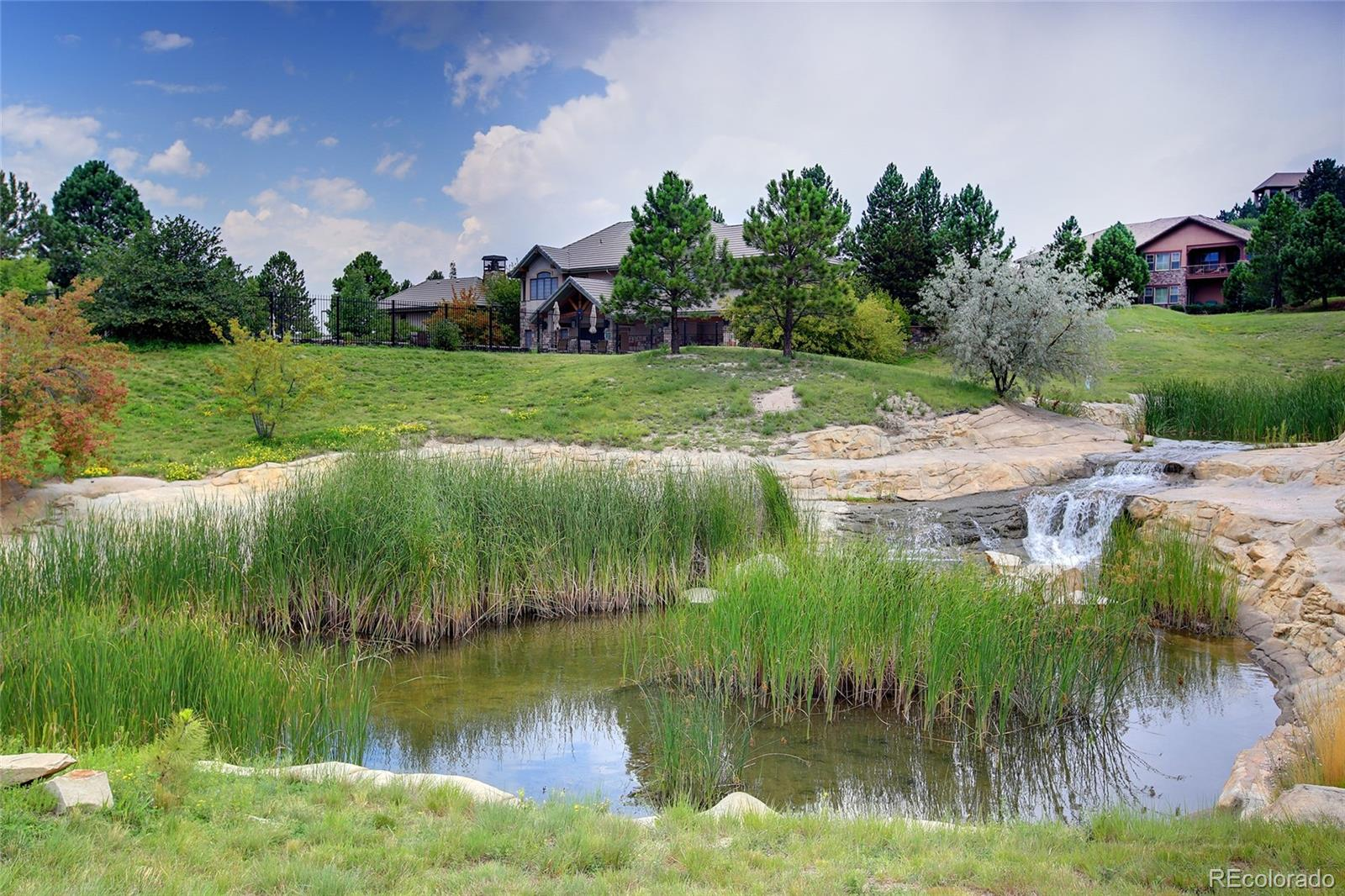 MLS# 5717518 - 14 - 952 Country Club Parkway, Castle Rock, CO 80108