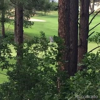 MLS# 5821911 - 4 - 1151 Country Club Parkway, Castle Rock, CO 80108