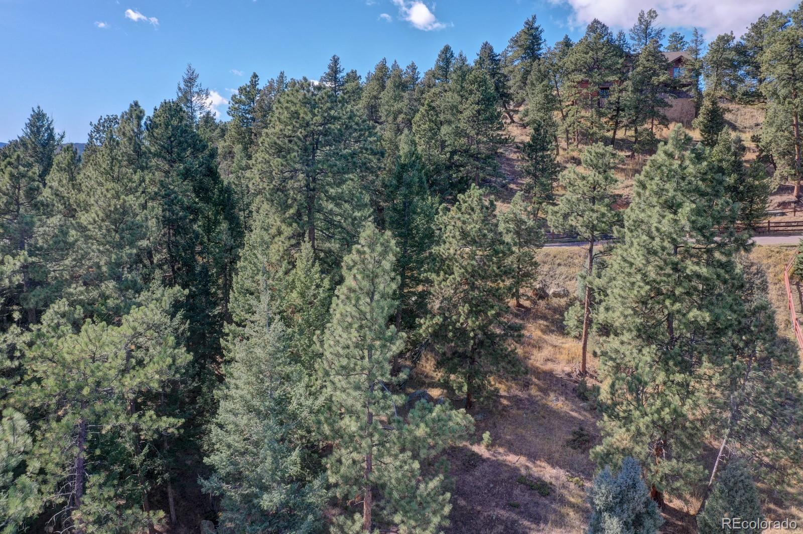 MLS# 5979964 - 6 - 4094 S Alpine Drive, Evergreen, CO 80439