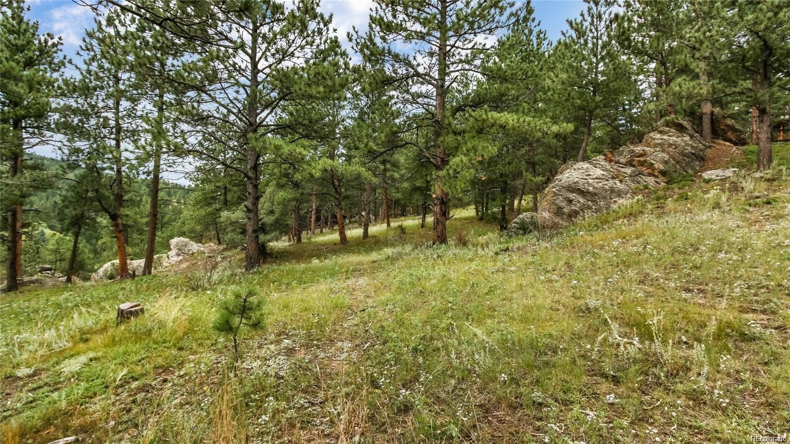 MLS# 6037939 - 1 - 33697  Valley View Drive, Evergreen, CO 80439