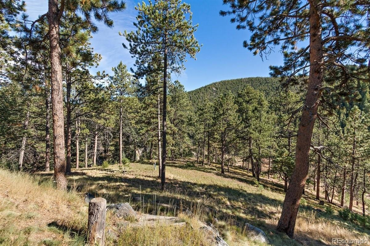 MLS# 6046086 - 31 - 7322 Brook Trout Trail, Evergreen, CO 80439