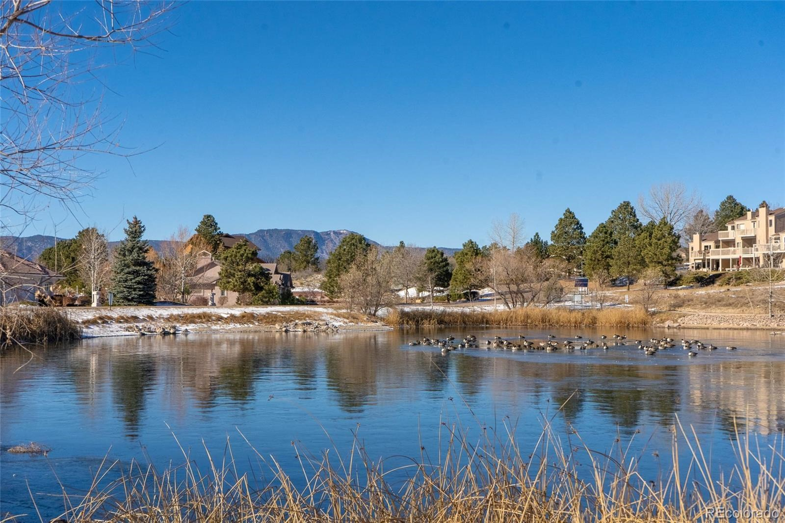 MLS# 6078681 - 8 - 375 Mission Hill Way, Colorado Springs, CO 80921