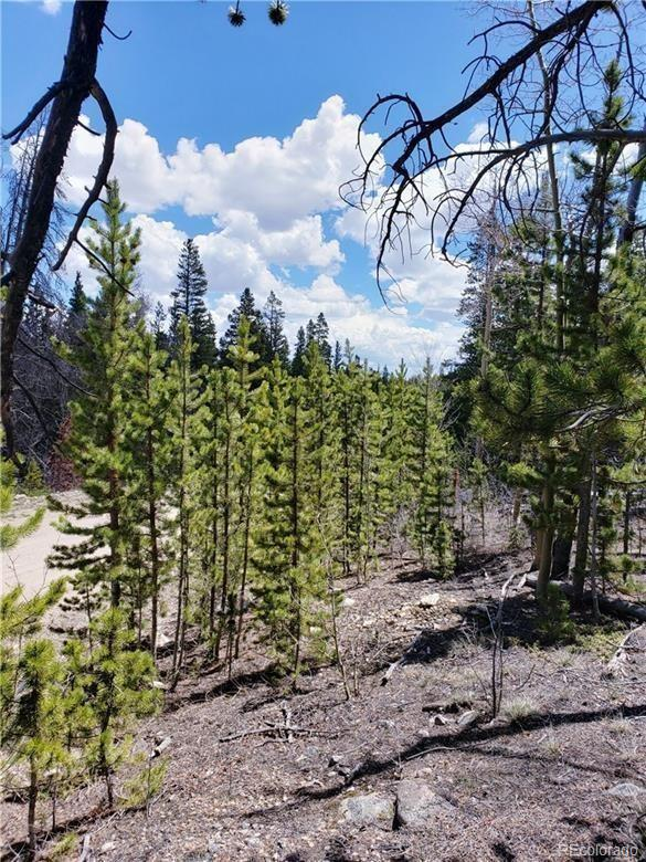 MLS# 6347288 - 1 - 472  Vots Drive, Fairplay, CO 80440