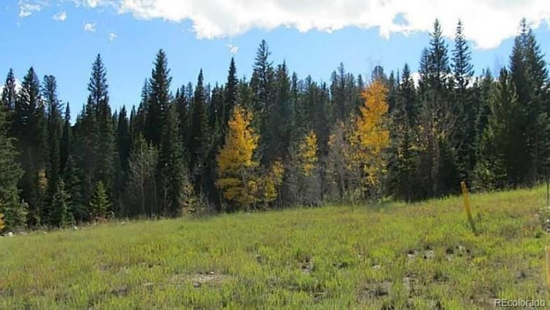 MLS# 6527737 - 1 - 711  Willowbrook Road, Silverthorne, CO 80498