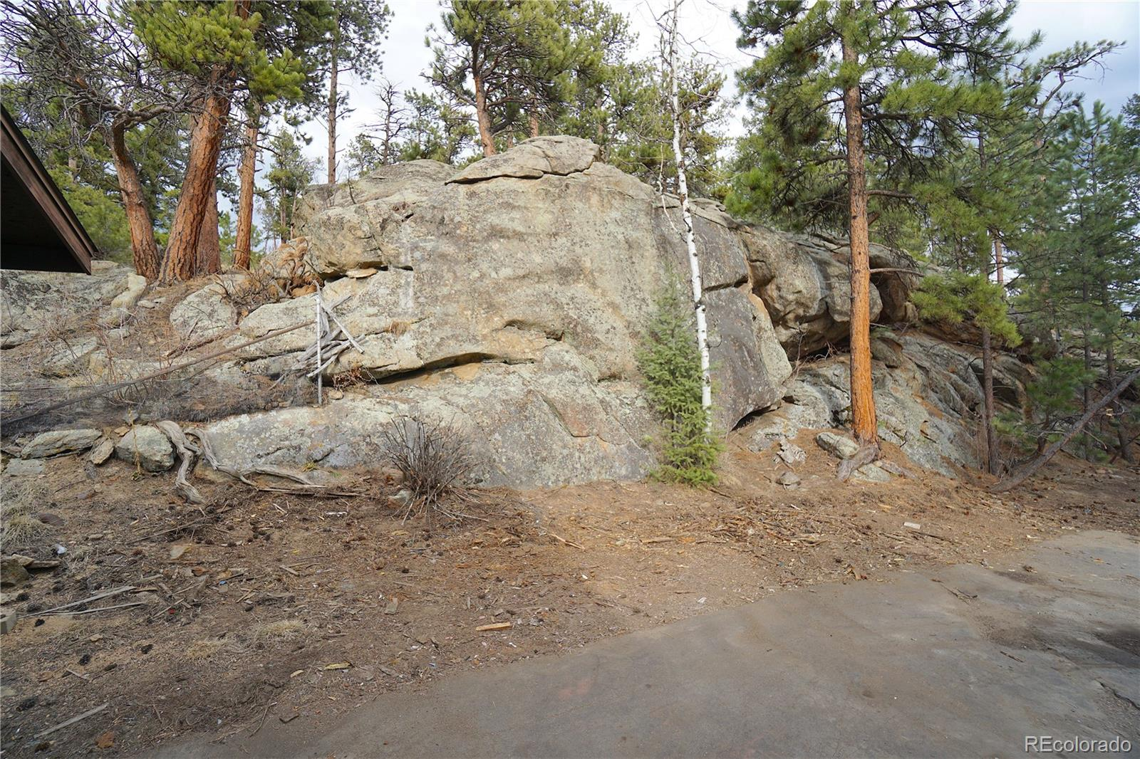MLS# 6693634 - 11 - 30113 Troutdale Scenic Drive, Evergreen, CO 80439