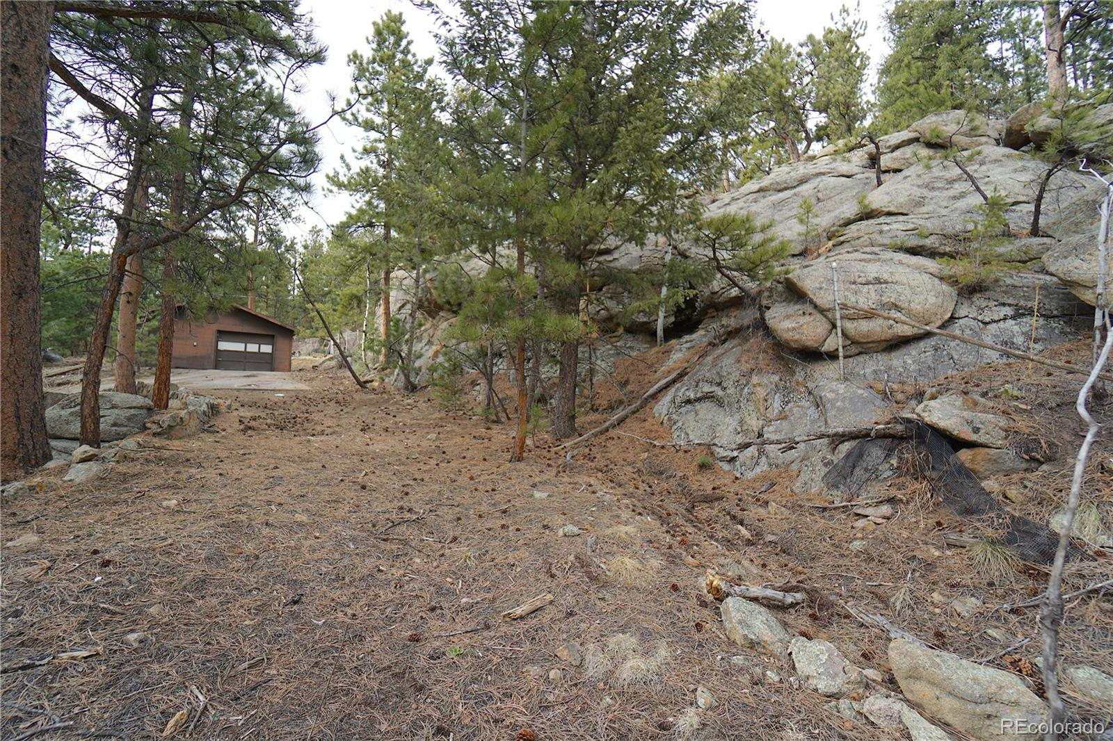 MLS# 6693634 - 13 - 30113 Troutdale Scenic Drive, Evergreen, CO 80439