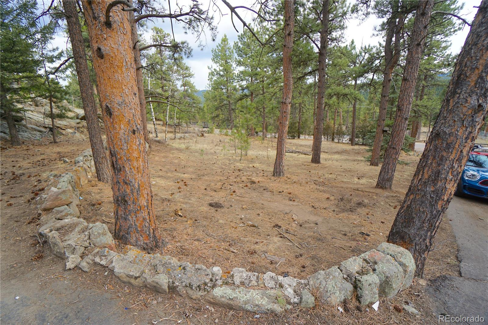 MLS# 6693634 - 15 - 30113 Troutdale Scenic Drive, Evergreen, CO 80439