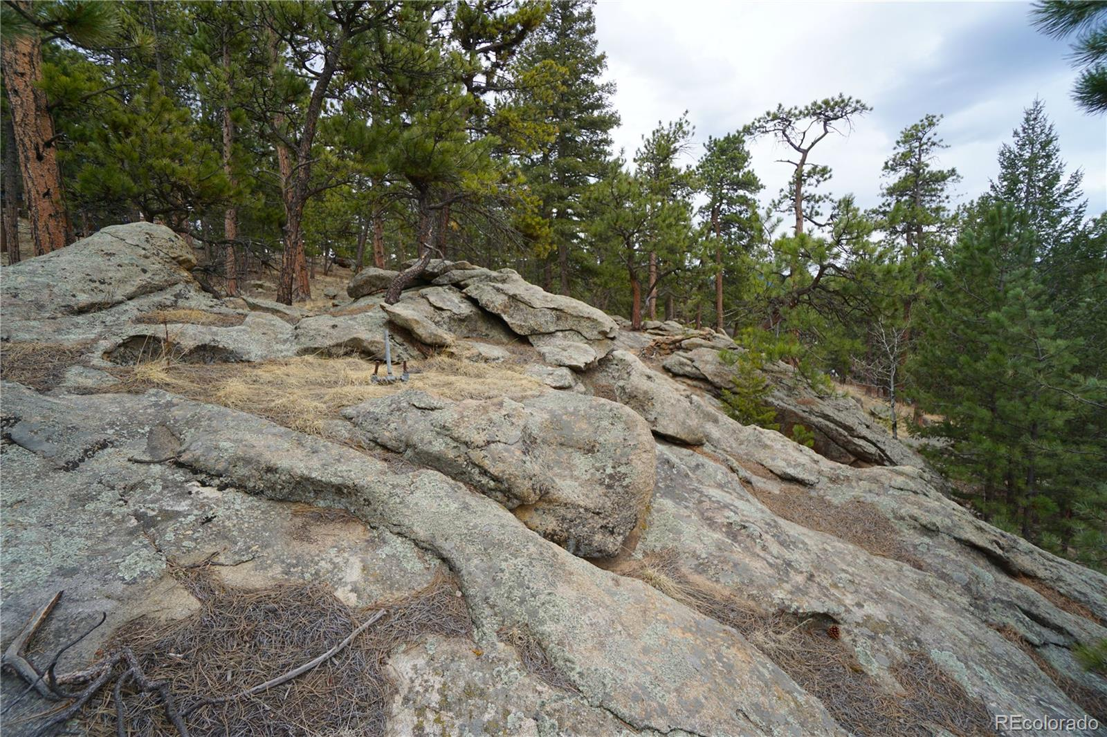 MLS# 6693634 - 17 - 30113 Troutdale Scenic Drive, Evergreen, CO 80439