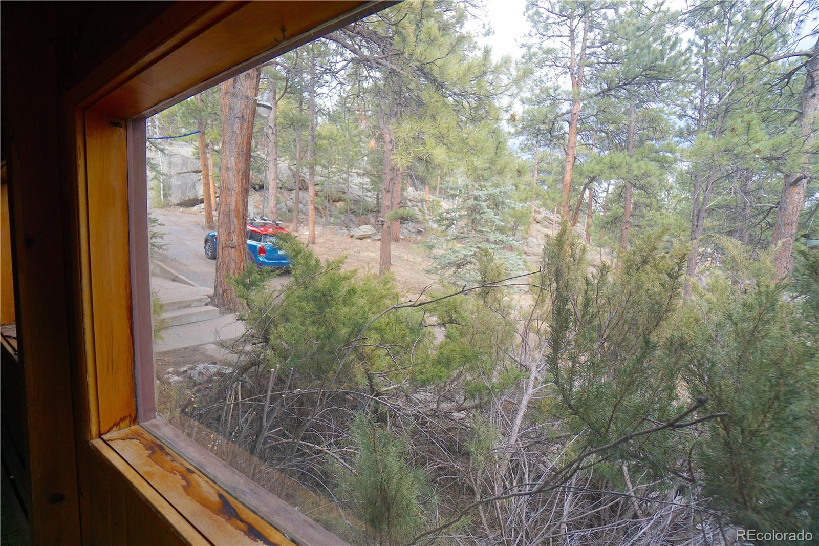 MLS# 6693634 - 23 - 30113 Troutdale Scenic Drive, Evergreen, CO 80439