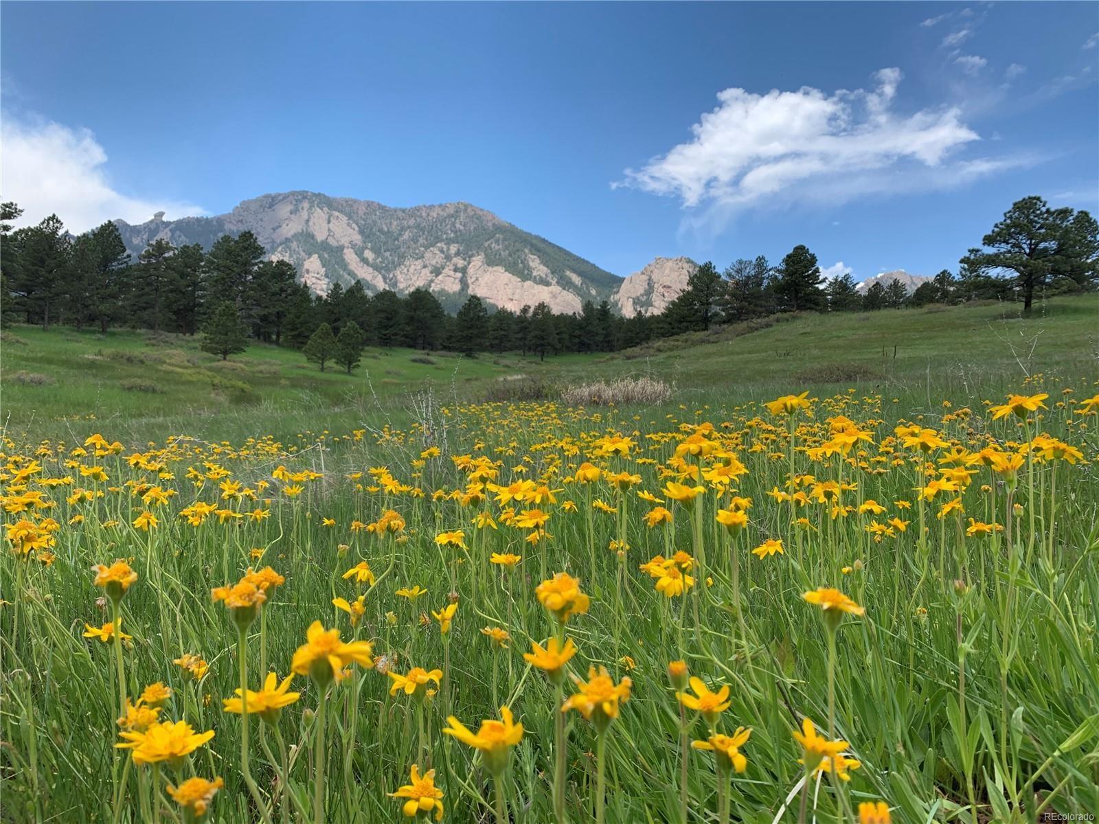 MLS# 6826635 - 40 - 3747 Telluride Circle, Boulder, CO 80305