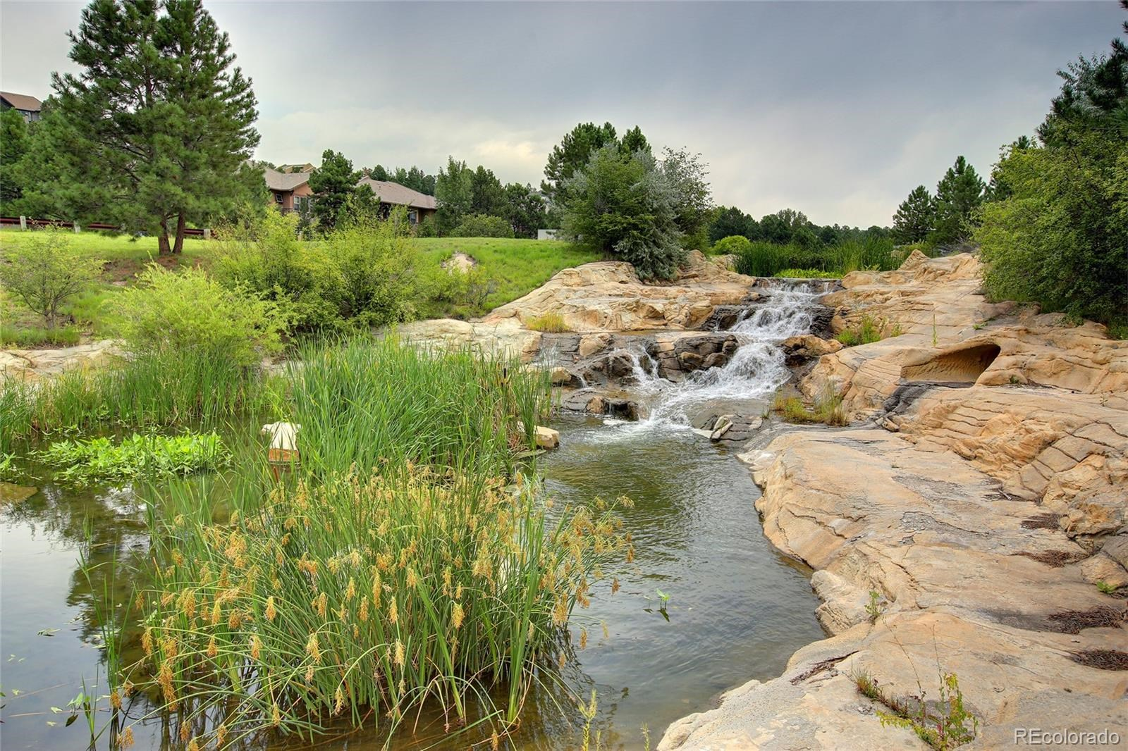 MLS# 7138743 - 16 - 965 Country Club Parkway, Castle Rock, CO 80108