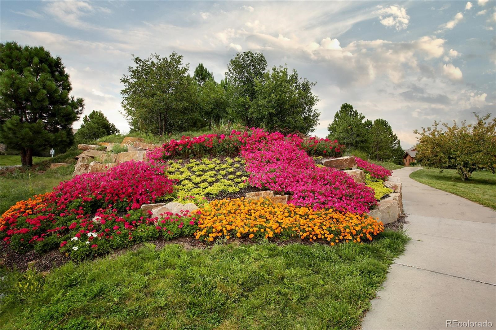 MLS# 7138743 - 8 - 965 Country Club Parkway, Castle Rock, CO 80108