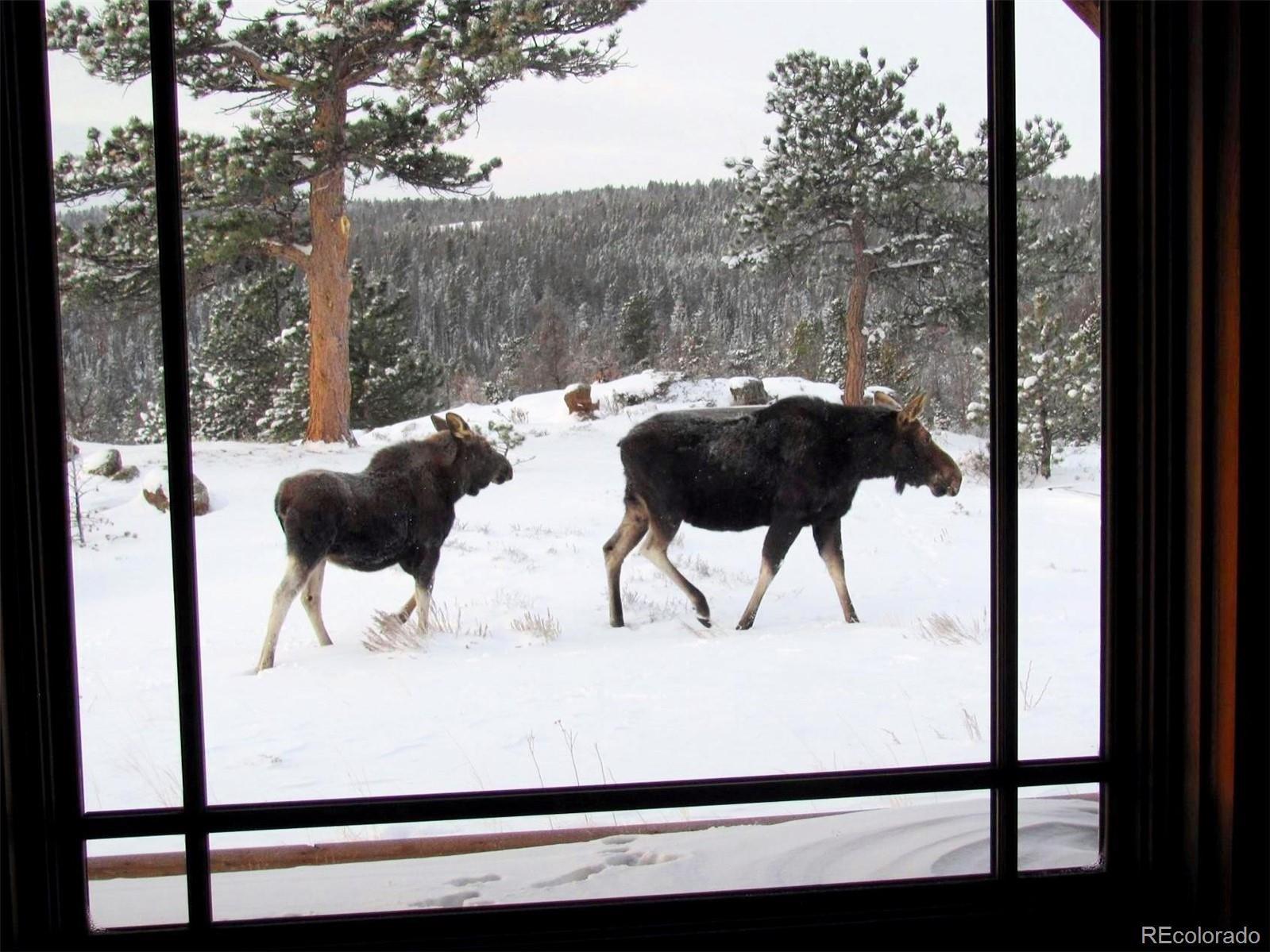 MLS# 7268441 - 11 - 376 Deer Crossing Rd , Tie Siding, WY 82084
