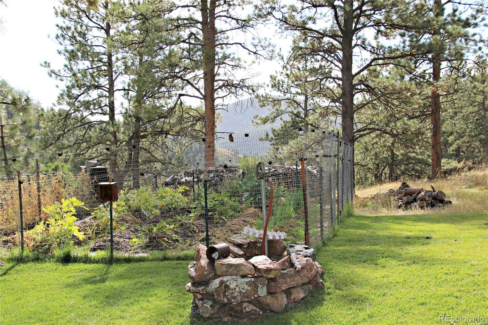MLS# 7396522 - 1 - 2195  Pine Drop Lane, Golden, CO 80401