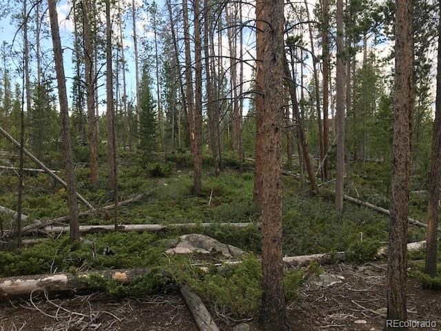 MLS# 7402621 - 1 - 45  County Road 4781, Grand Lake, CO 80447