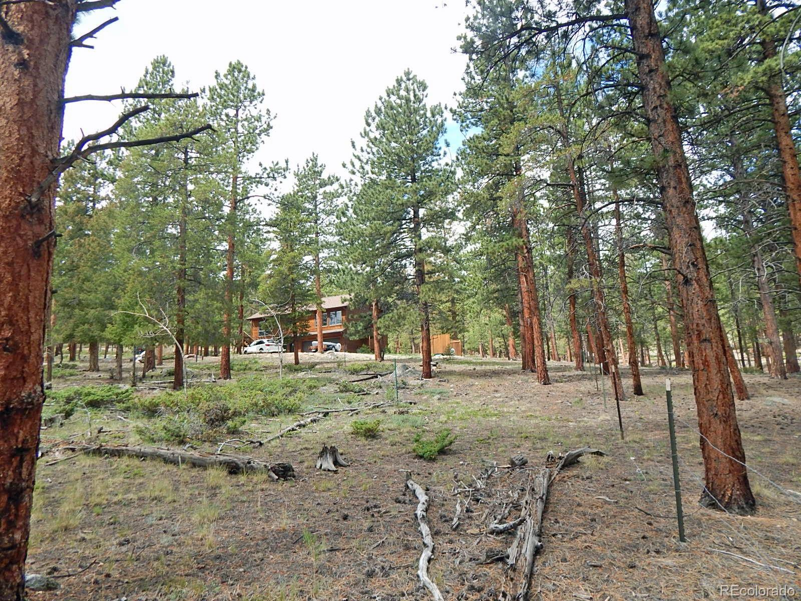 MLS# 7606361 - 34 - 30378 National Forest Drive, Buena Vista, CO 81211