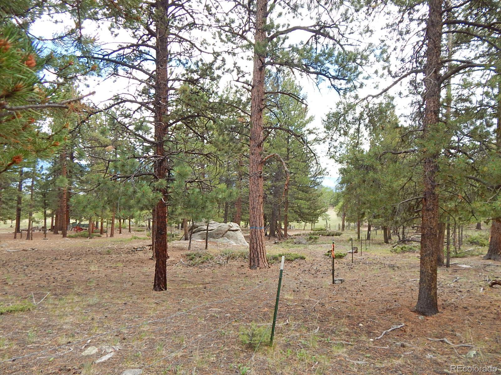 MLS# 7606361 - 35 - 30378 National Forest Drive, Buena Vista, CO 81211