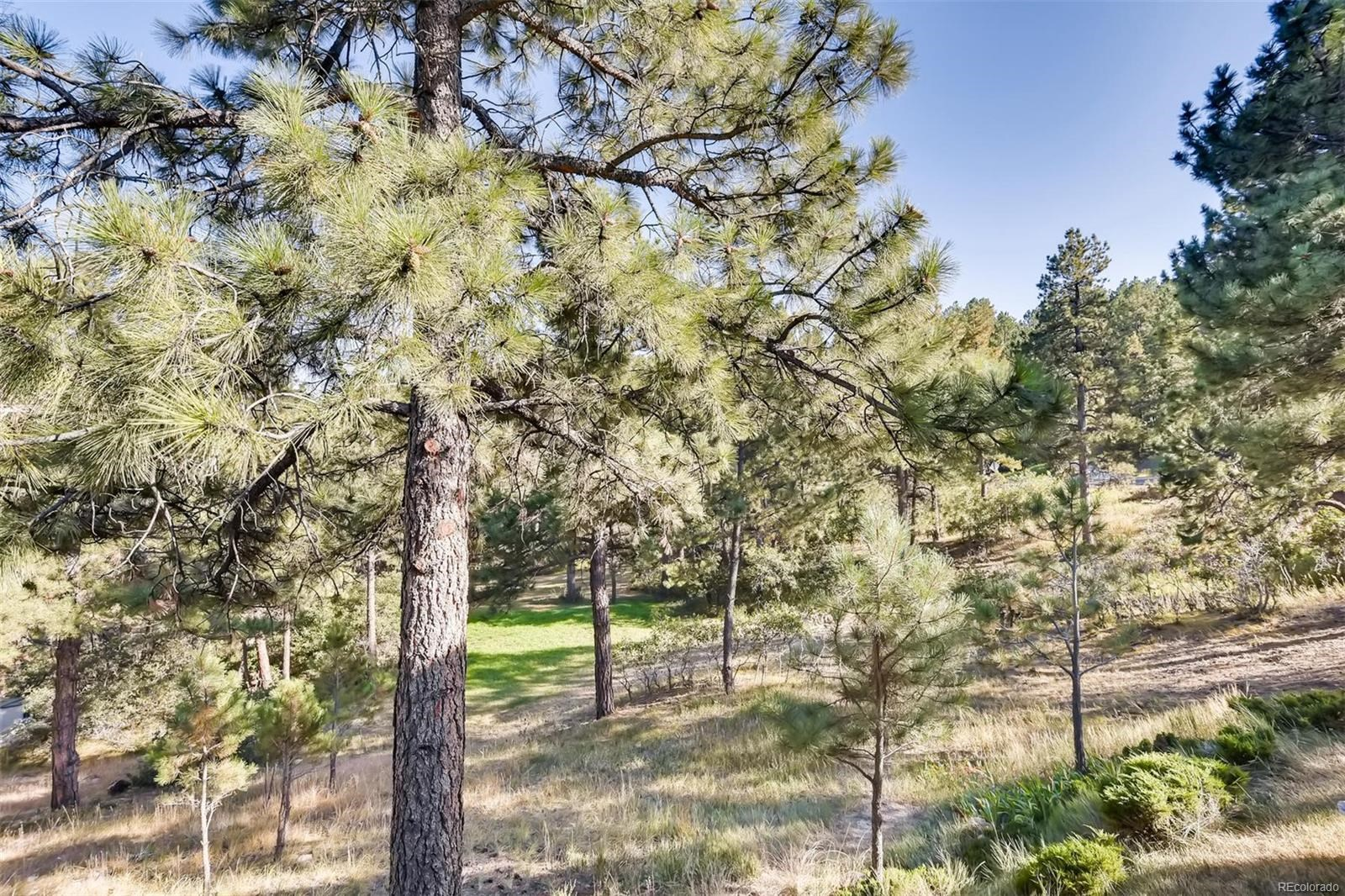MLS# 7613734 - 25 - 11093 Pine Valley Drive, Franktown, CO 80116