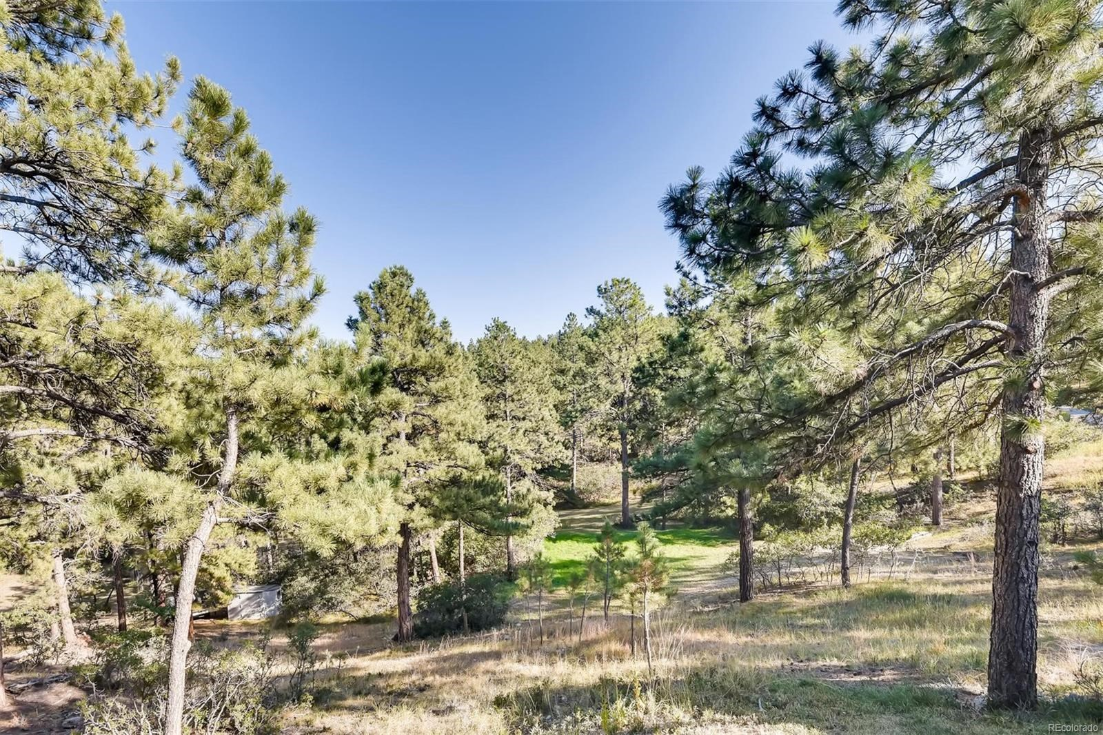 MLS# 7613734 - 26 - 11093 Pine Valley Drive, Franktown, CO 80116