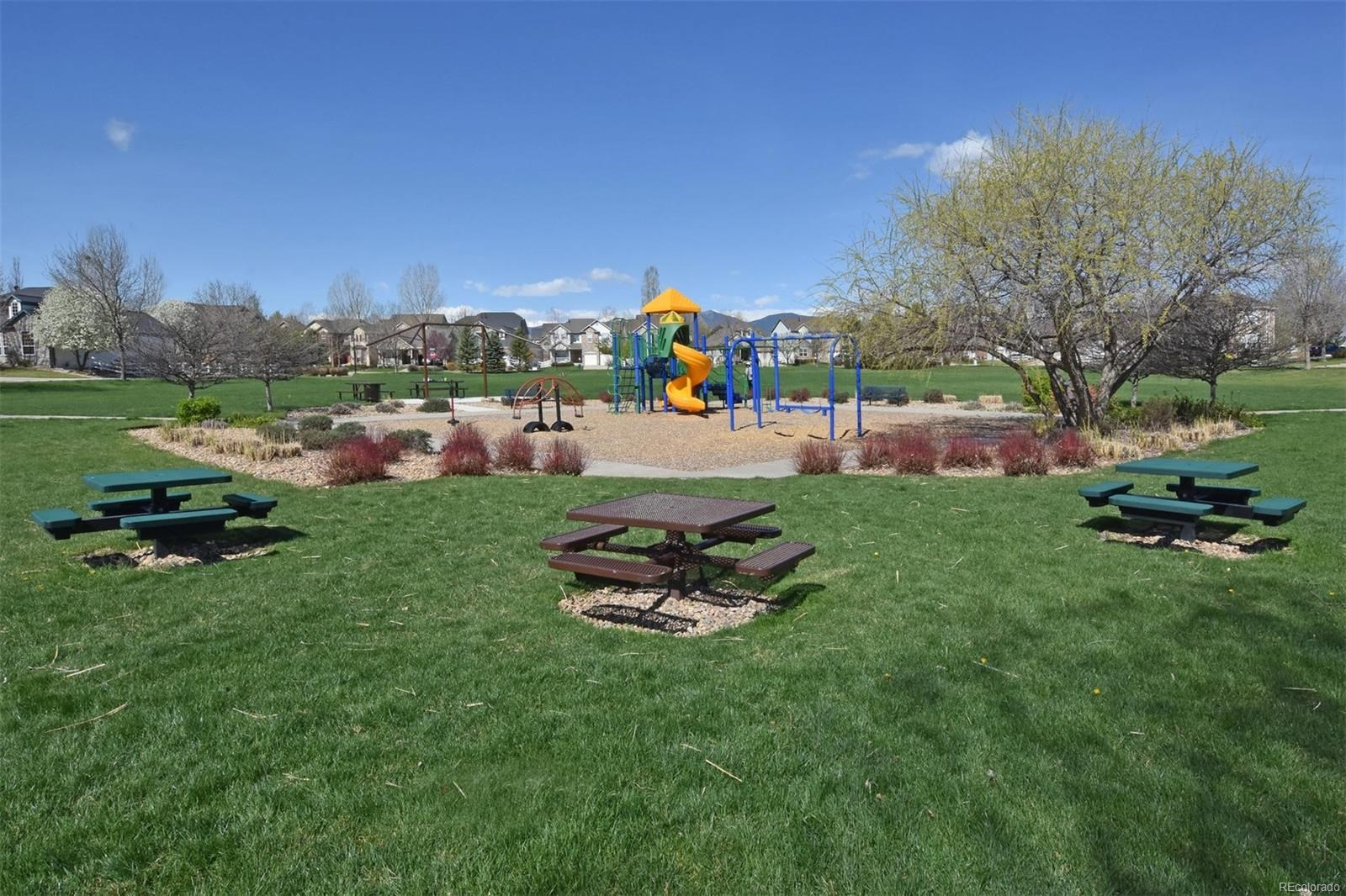 MLS# 7845487 - 1657  Dorothy Circle, Longmont, CO 80503