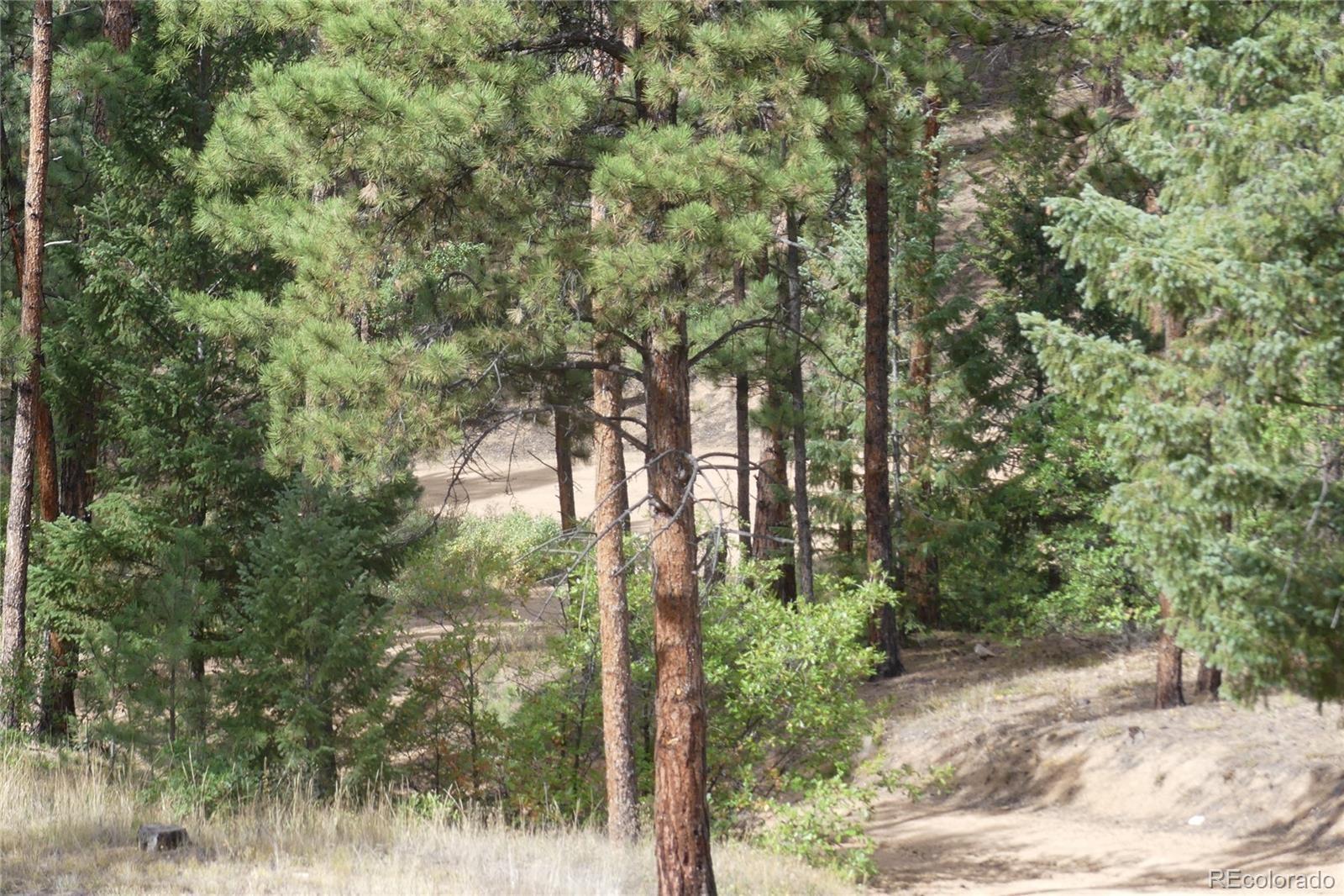 MLS# 7936975 - 38 - 13645 Pine Creek Road, Sedalia, CO 80135