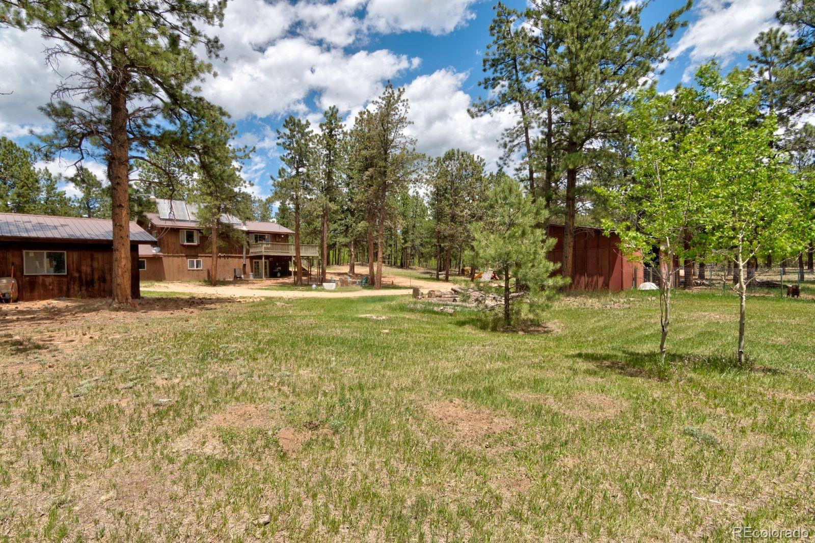 MLS# 7974554 - 29 - 810 Tincup Terrace, Bailey, CO 80421