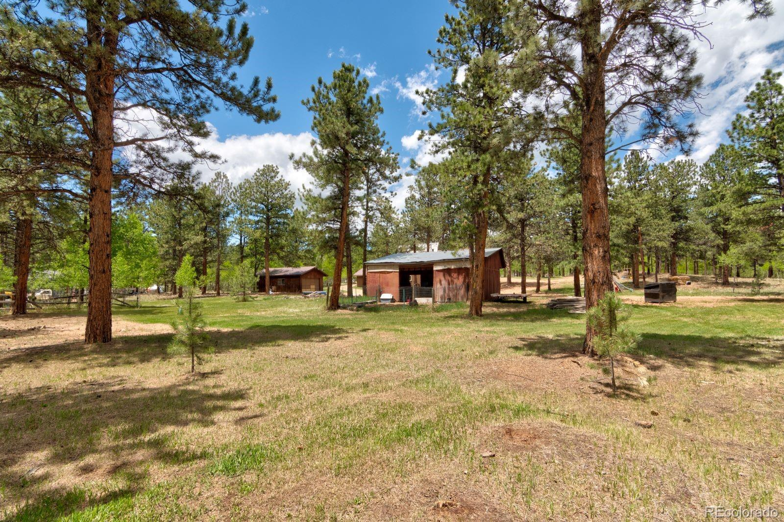 MLS# 7974554 - 37 - 810 Tincup Terrace, Bailey, CO 80421