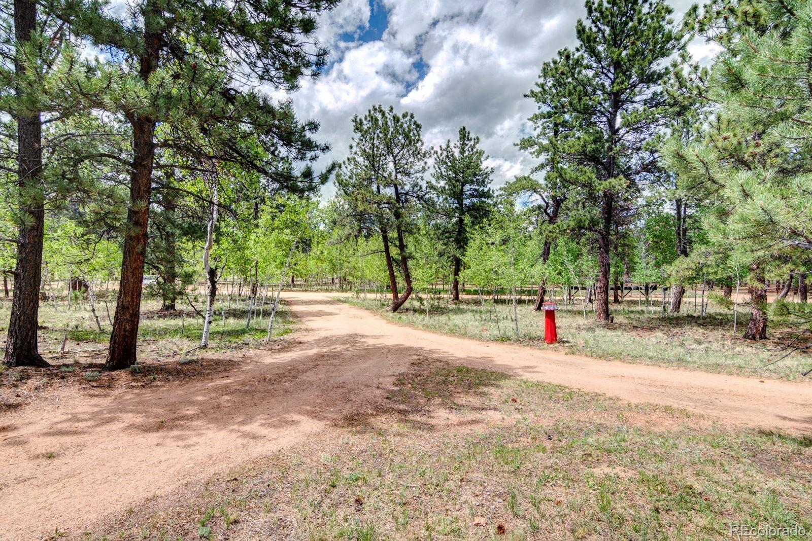 MLS# 7974554 - 38 - 810 Tincup Terrace, Bailey, CO 80421