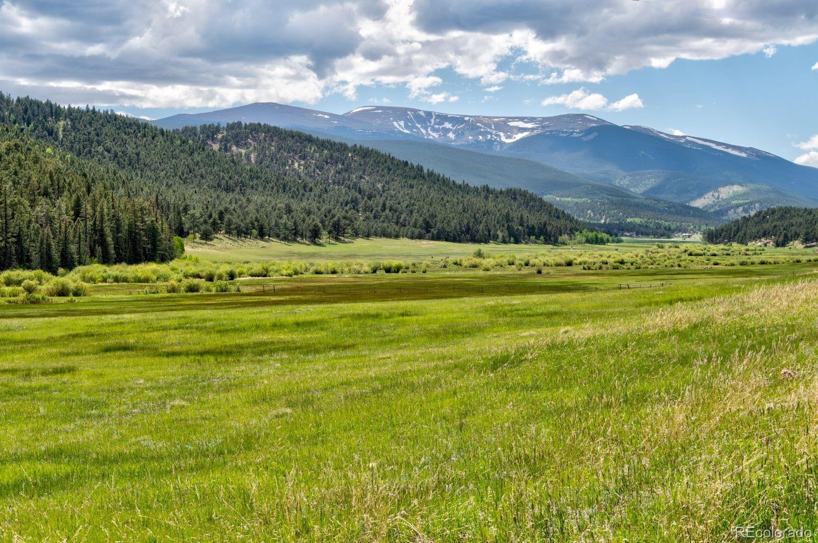 MLS# 7974554 - 39 - 810 Tincup Terrace, Bailey, CO 80421