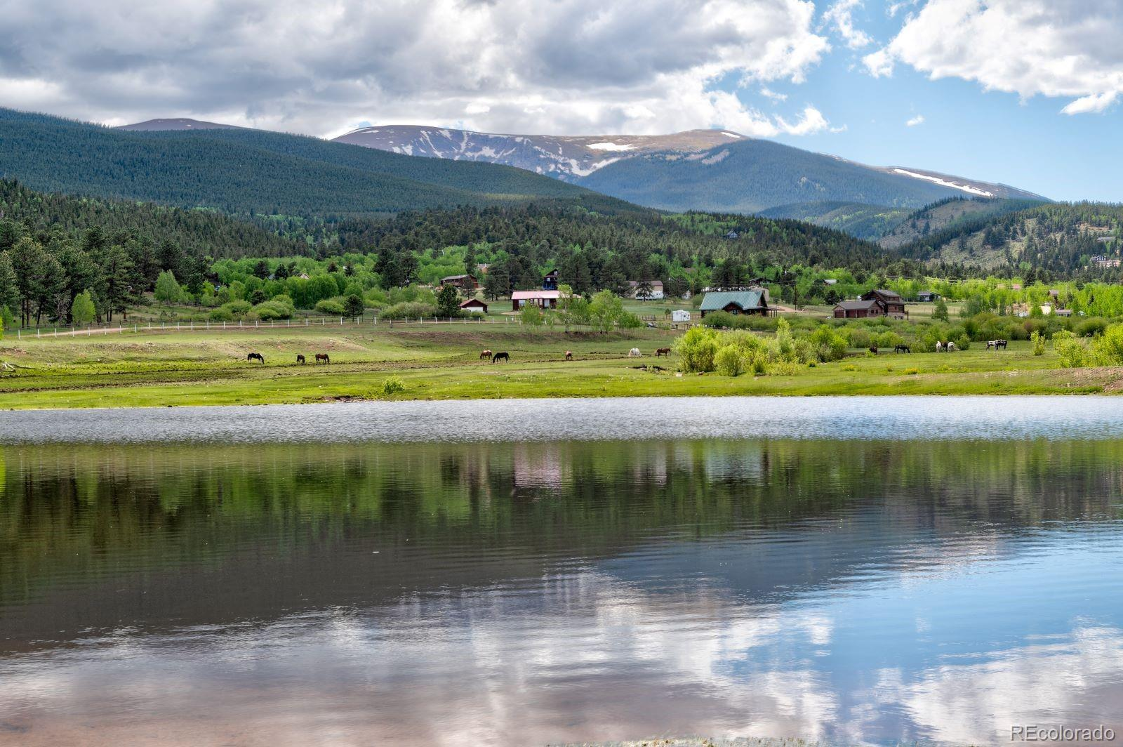 MLS# 7974554 - 40 - 810 Tincup Terrace, Bailey, CO 80421