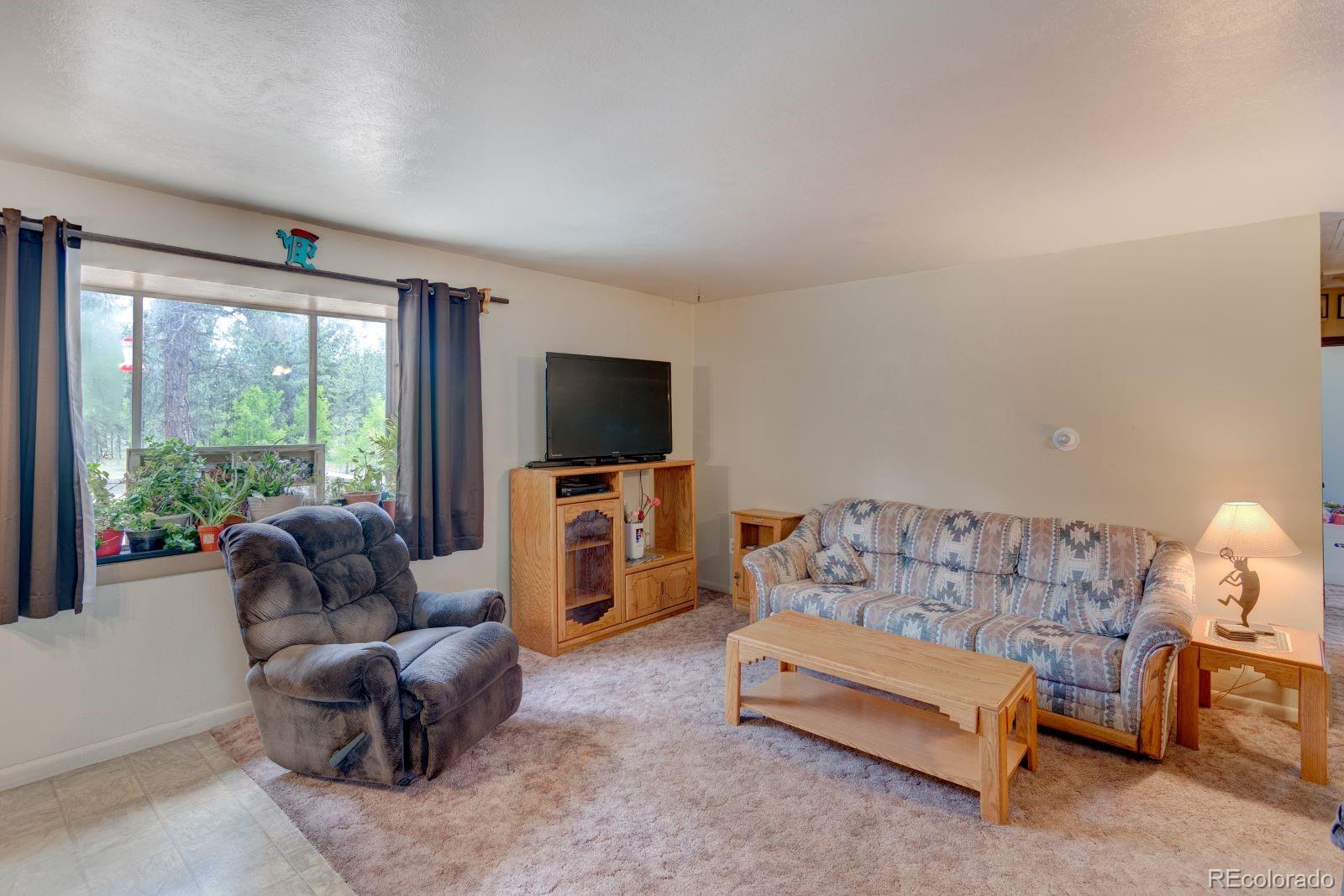 MLS# 7974554 - 6 - 810 Tincup Terrace, Bailey, CO 80421