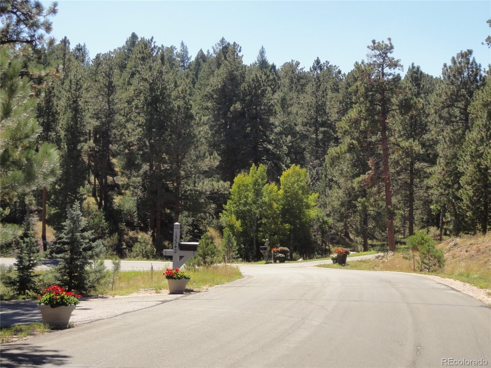 MLS# 7982246 - 38 - 13831 Douglas Ranch Drive, Pine, CO 80470