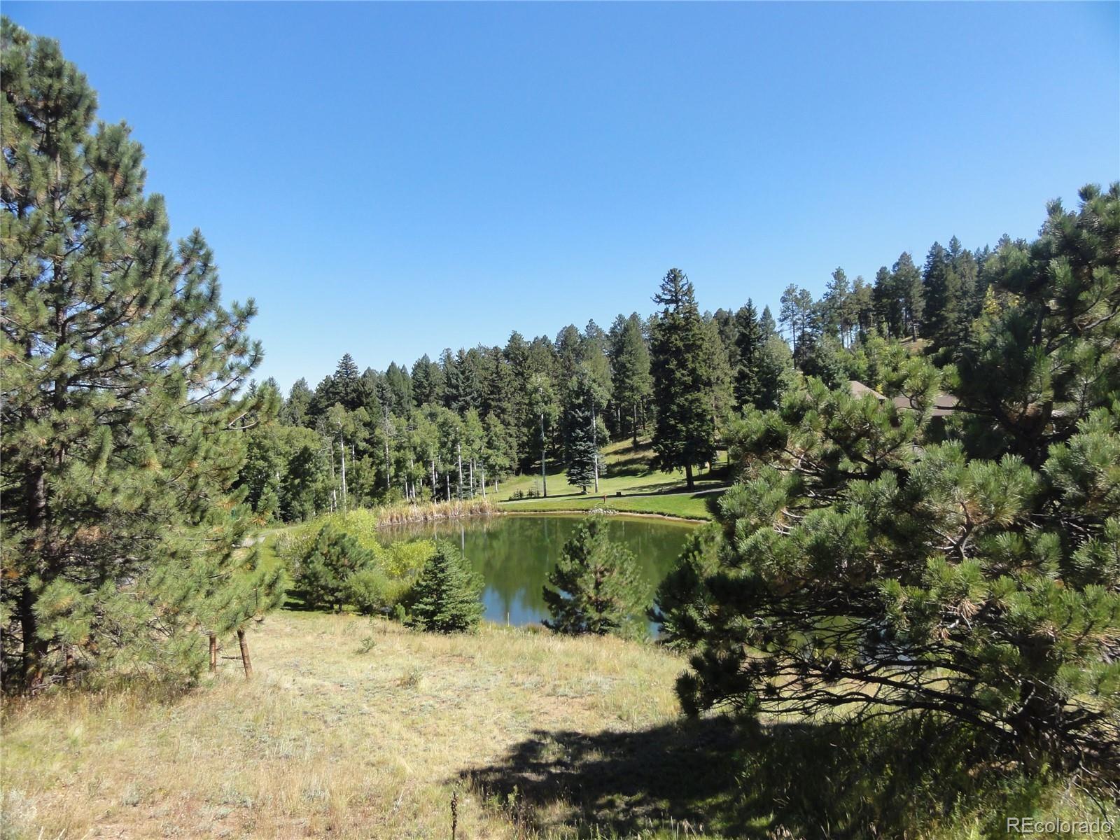 MLS# 7982246 - 39 - 13831 Douglas Ranch Drive, Pine, CO 80470