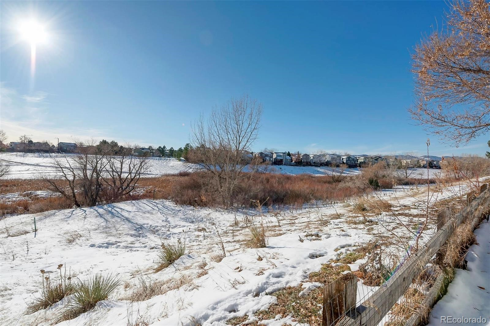 MLS# 8018796 - 4 - 9847 Spring Hill Lane, Highlands Ranch, CO 80129