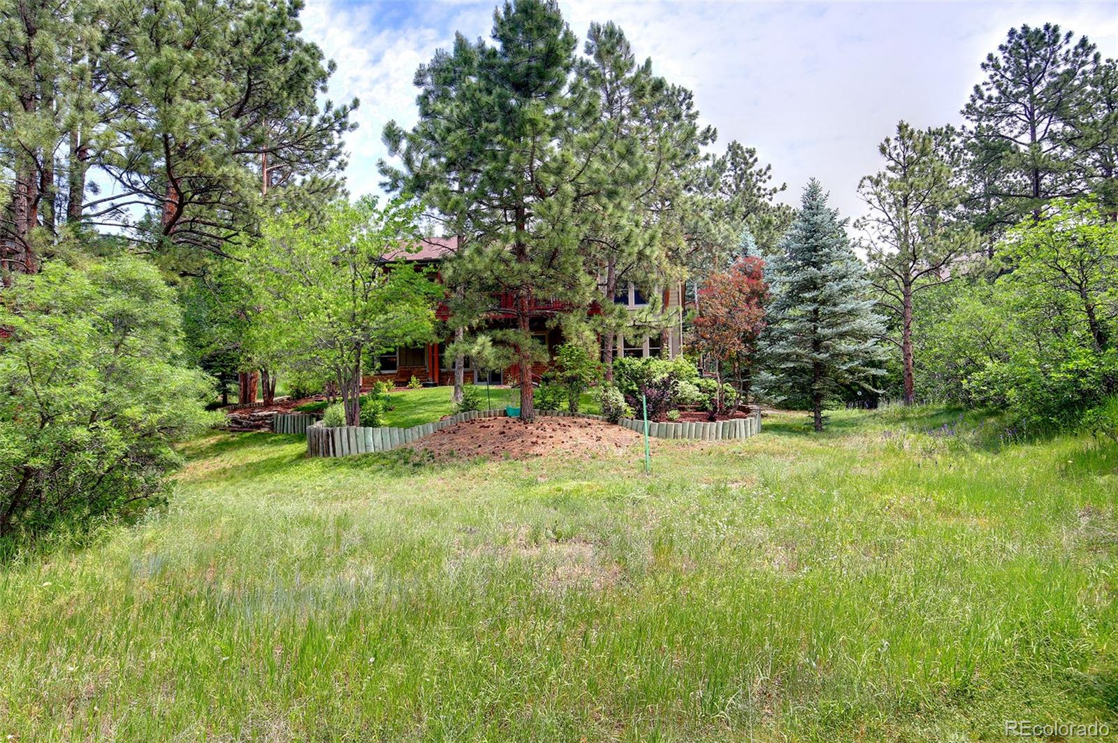MLS# 8150320 - 36 - 1198 Forest Trails Drive, Castle Pines, CO 80108