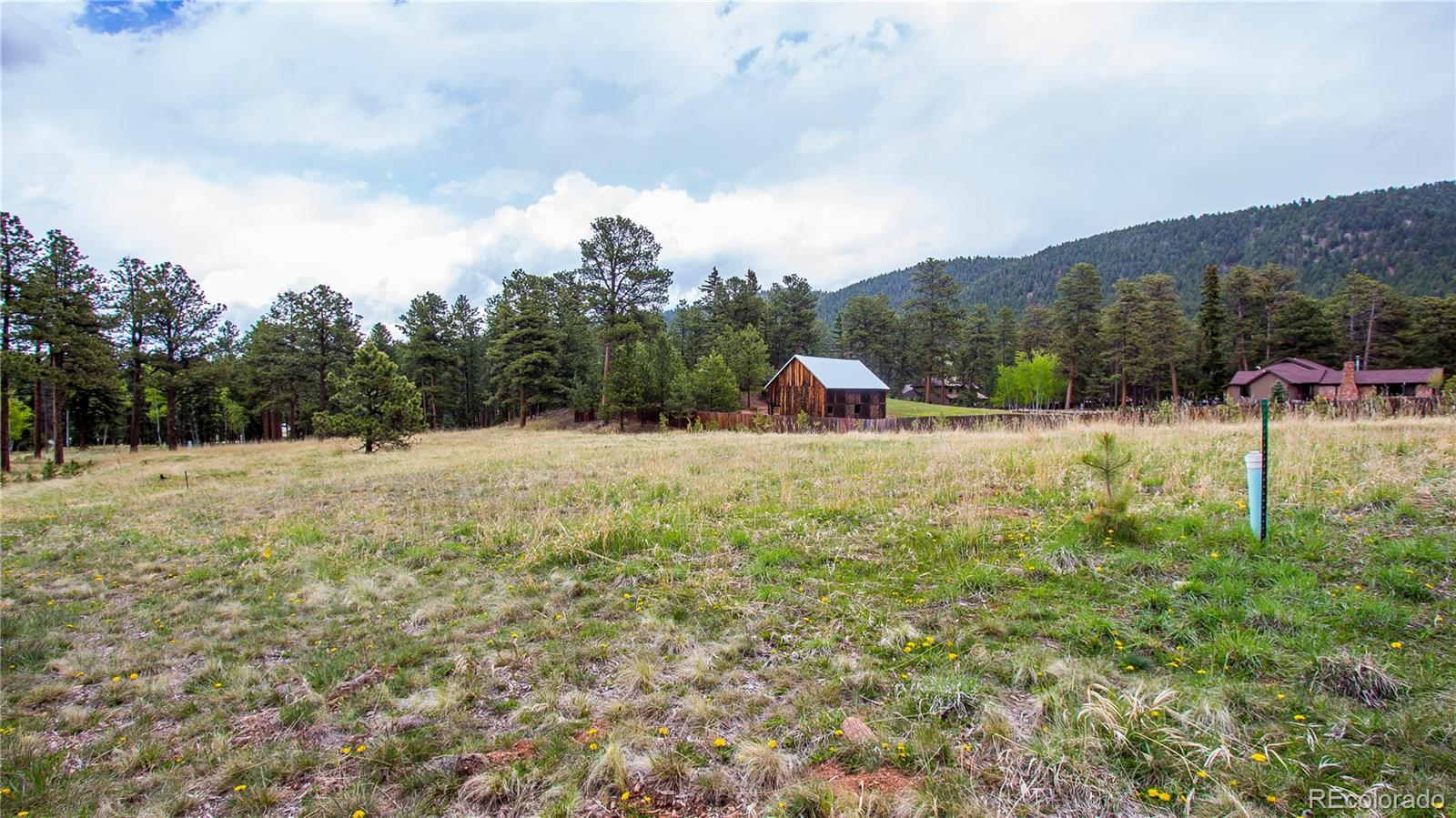 MLS# 8168025 - 2 - 1215 Cottontail Trail, Woodland Park, CO 80863