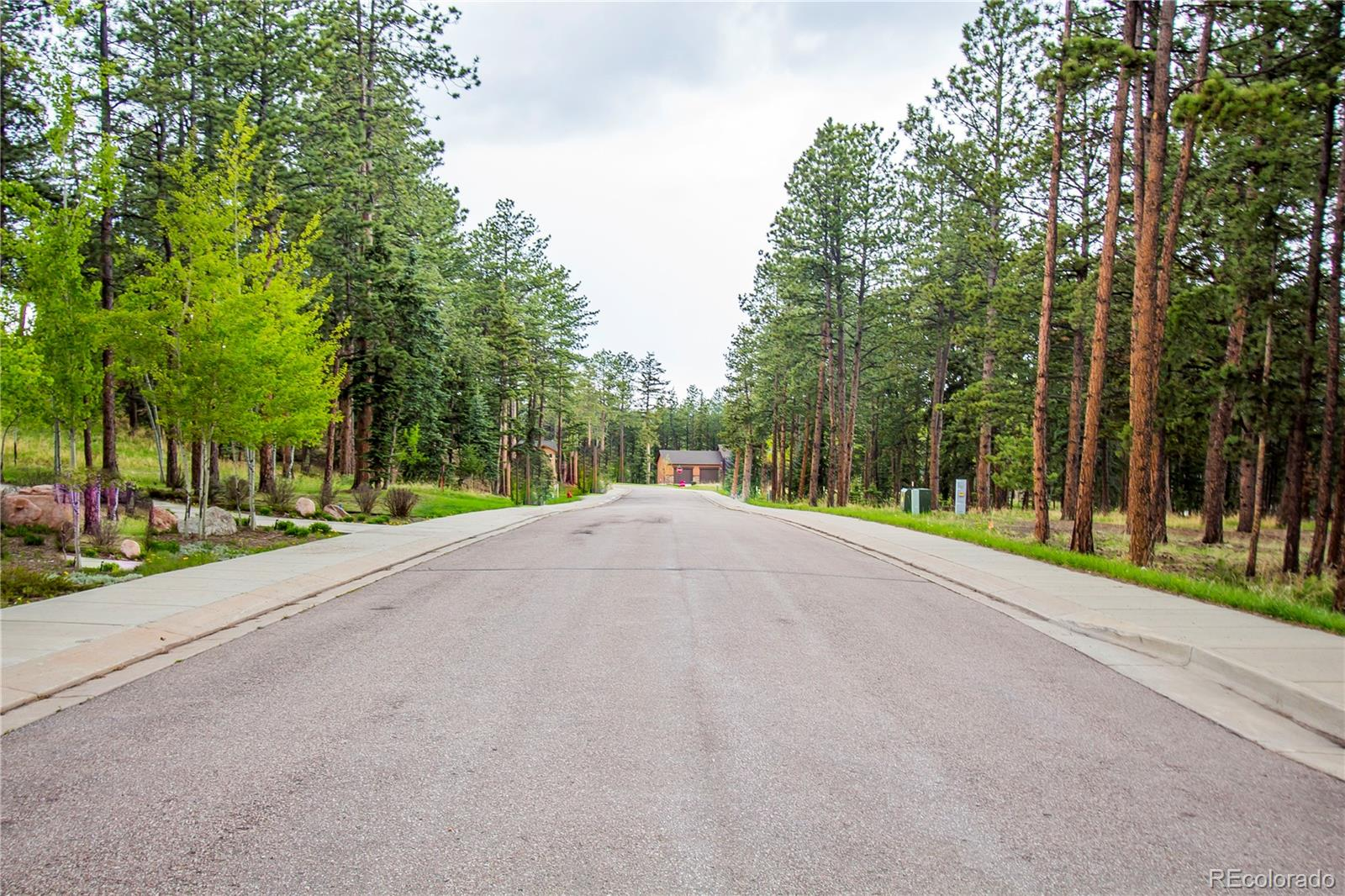 MLS# 8168025 - 12 - 1215 Cottontail Trail, Woodland Park, CO 80863