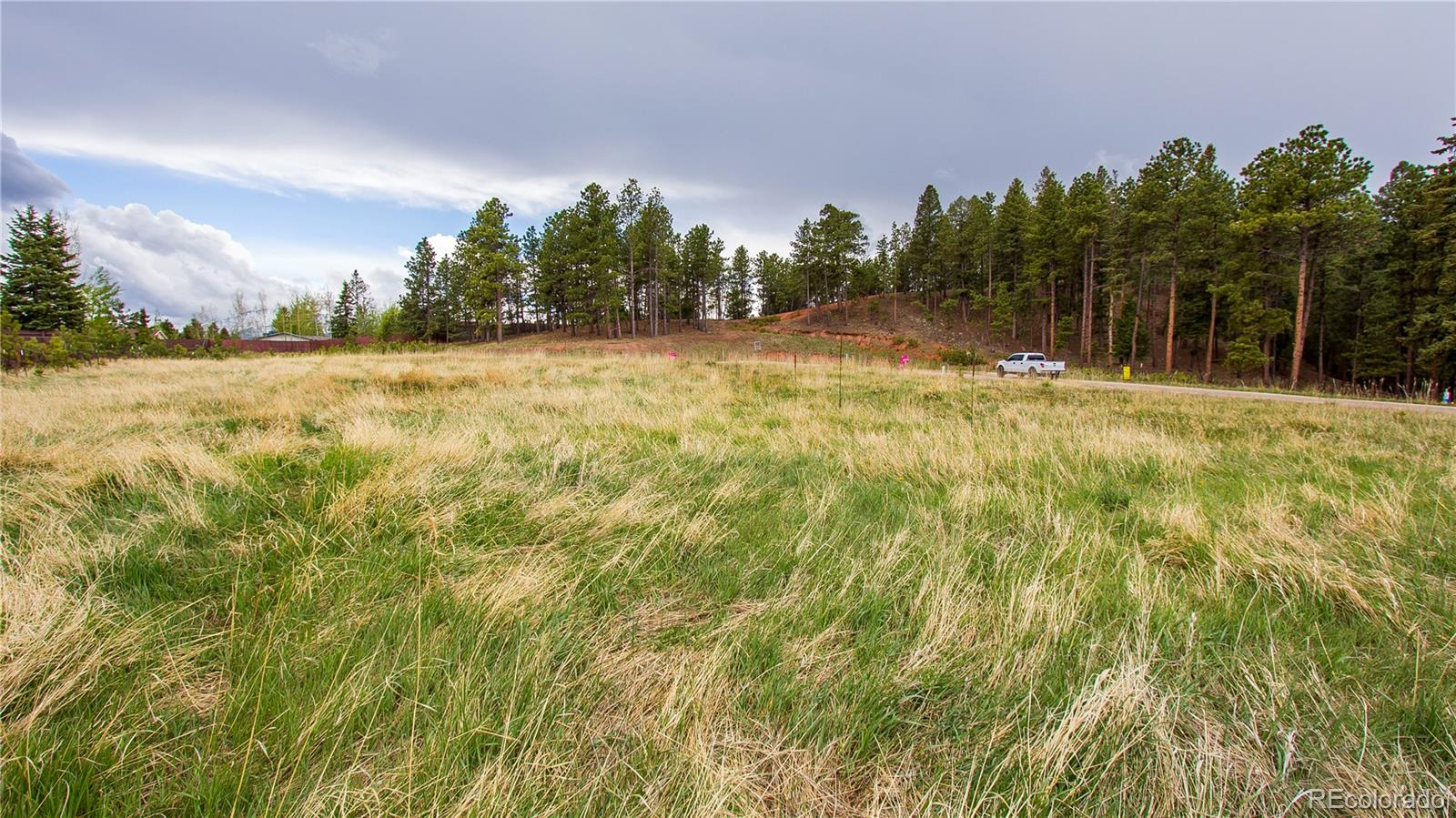MLS# 8168025 - 3 - 1215 Cottontail Trail, Woodland Park, CO 80863