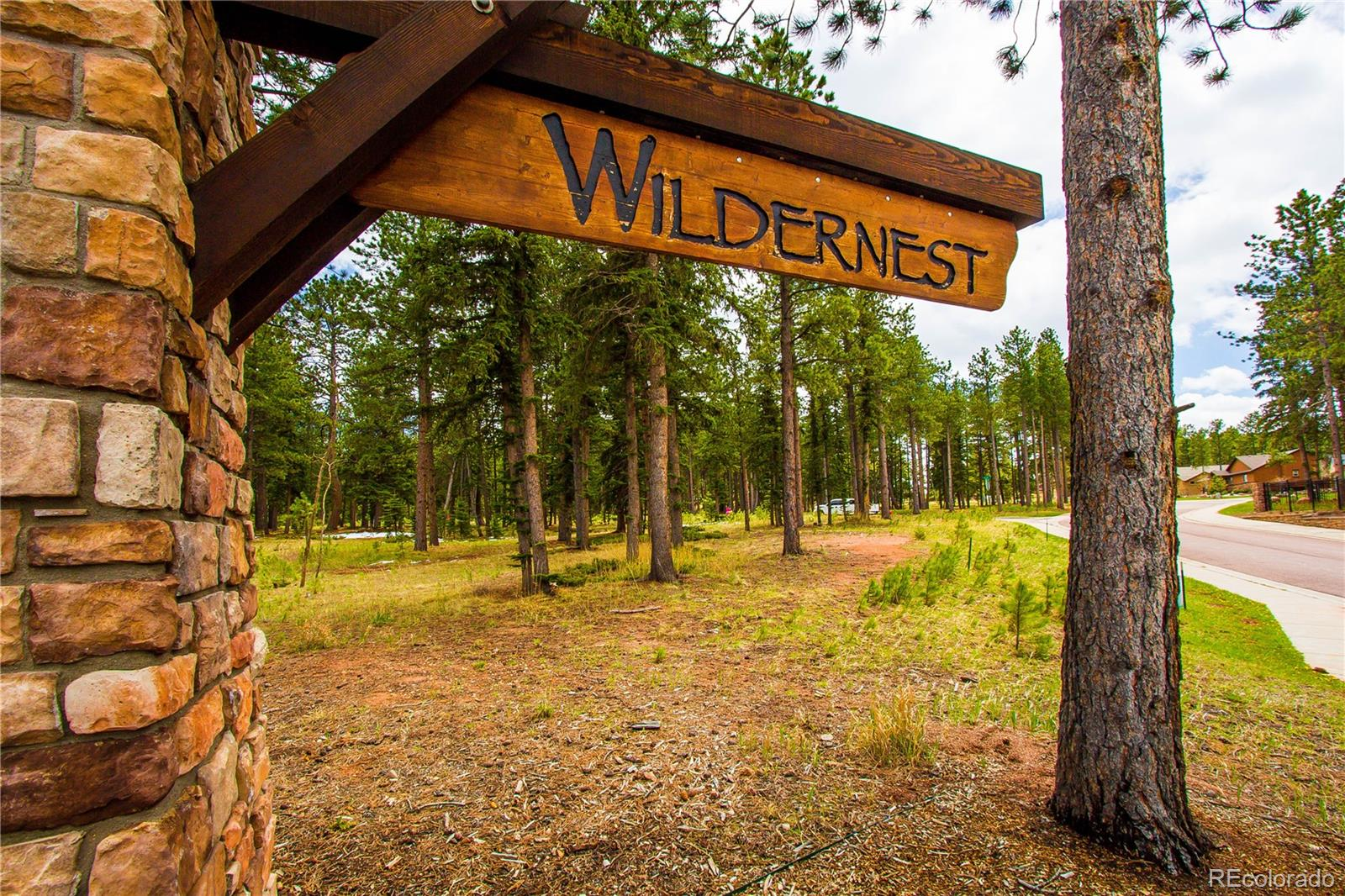 MLS# 8168025 - 10 - 1215 Cottontail Trail, Woodland Park, CO 80863