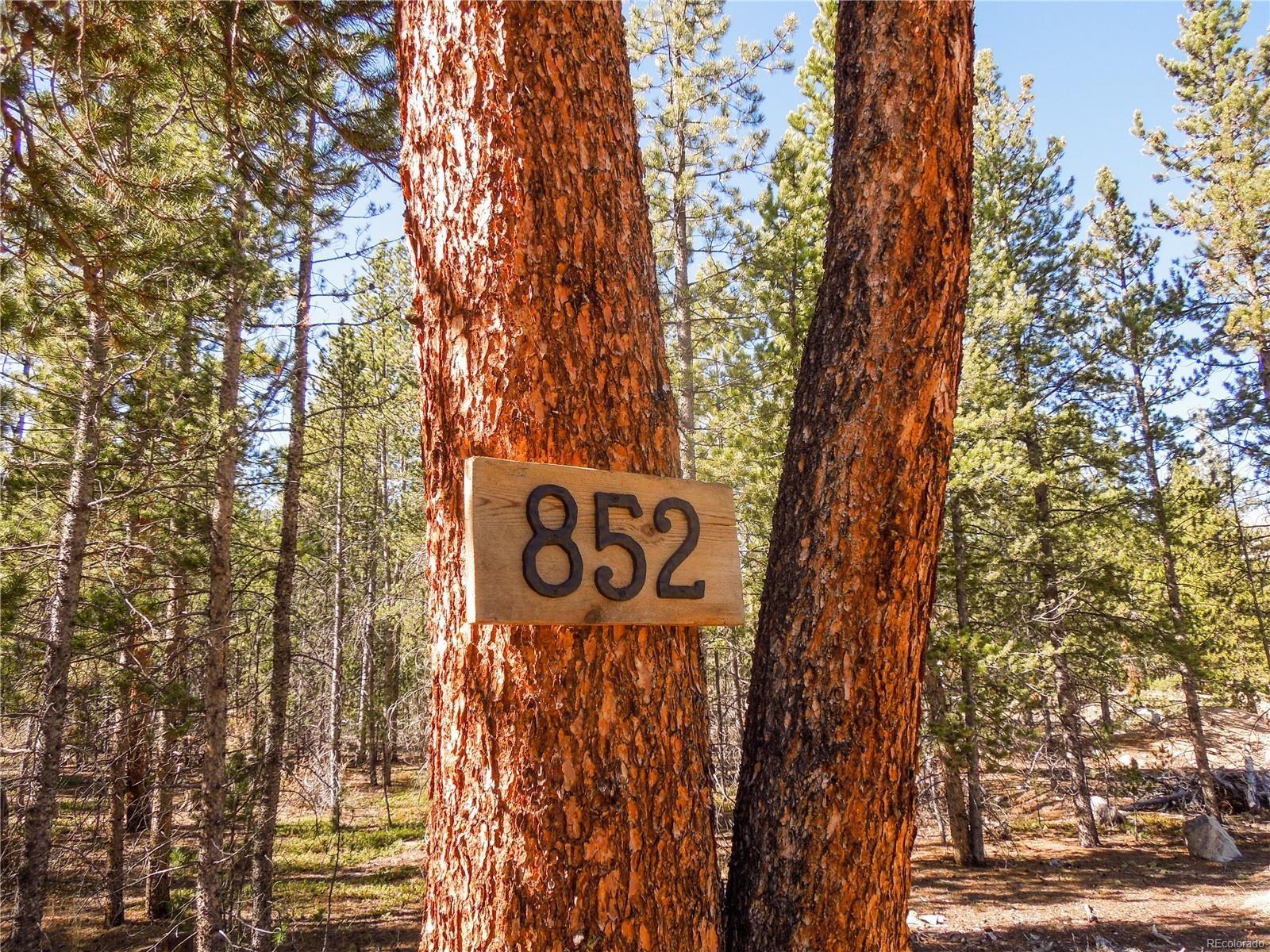 MLS# 8179364 - 2 - 852 Birch Drive, Twin Lakes, CO 81251