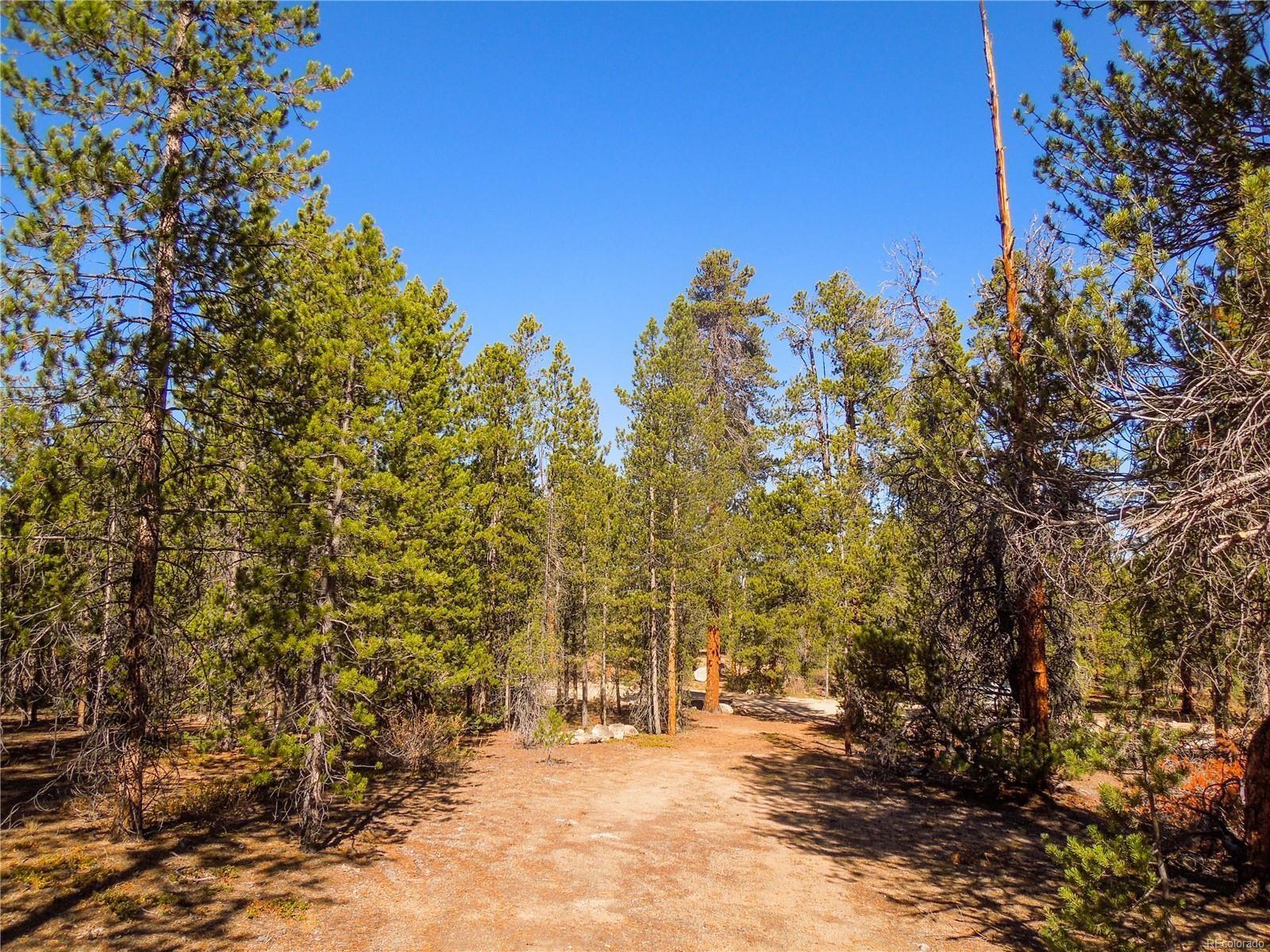 MLS# 8179364 - 3 - 852 Birch Drive, Twin Lakes, CO 81251