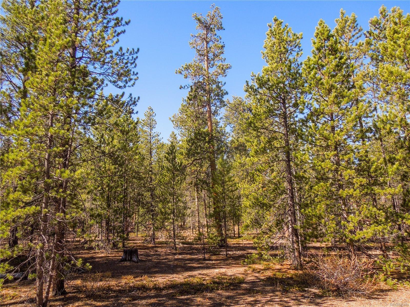 MLS# 8179364 - 5 - 852 Birch Drive, Twin Lakes, CO 81251