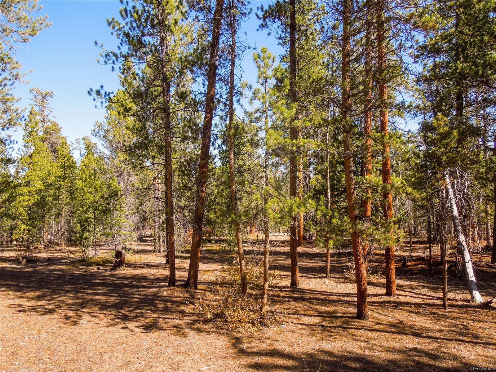 MLS# 8179364 - 6 - 852 Birch Drive, Twin Lakes, CO 81251